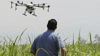 Agricultura de Precisão e Sustentabilidade